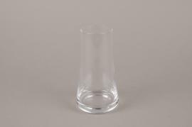 B563W3 Glass vase D9cm H16cm