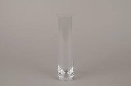 B567W3 Vase en verre soliflore cylindre D5 H23cm