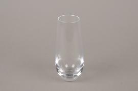 B578W3 Glass vase D6cm H14.5cm