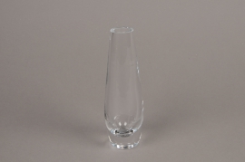 B585W3 Vase soliflore en verre obus D5.5cm H18cm