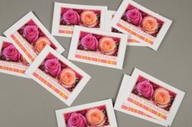 B717MQ Pack of 15 postcards Joyeux Anniversaire