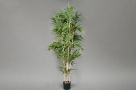 Bamboo artificial new H210cm