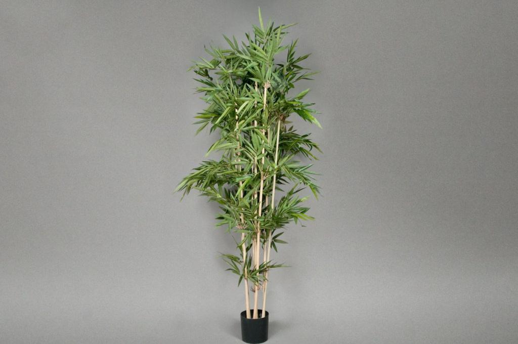 Bambou artificiel new H210cm