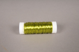 A026MG Bobine de fil de fer citron D0.03mm L50m