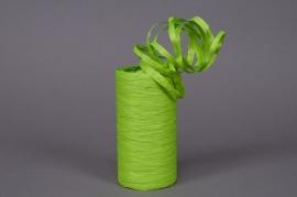 Bobine de raphia synthétique vert menthe 200m