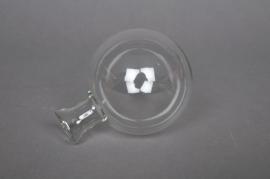Boîte de 35 vases soliflores en verre transparents à suspendre D7cm