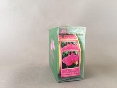 A725MQ Boîte de 500 étiquettes Joyeux anniversaire