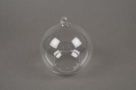 A028PM Boîte de 6 boules ouvertes à suspendre D10cm