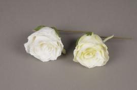 x167fd Boîte de 6 roses artificielles blanches D8cm