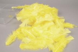pl42lw Boite de plumes de dinde jaune 45gr