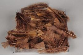 p139lw Boîte de plumes marron 45g
