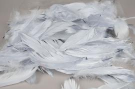 x015ek Boite de plumes nageoires gris 25gr