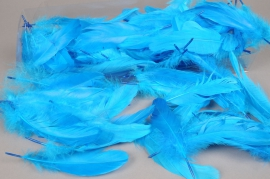x016ek Boite de plumes nageoires turquoise 25gr