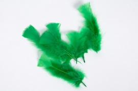 Boîte de plumes vertes 40g