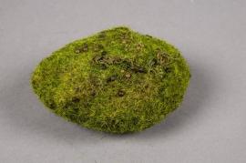 x325di Artificial moss D10