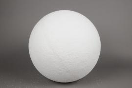 X105AZ Boule enneigée blanche D20cm