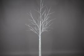 X011H4 Birch lighting LED H240cm