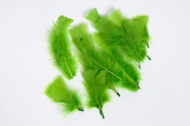 Box of apple green feathers 40g