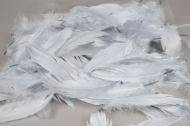 x015ek Box of feathers grey 25gr