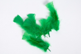 Box of green feathers 40g