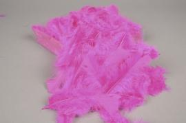 pl26lw Box of turkey feathers fuchsia 45gr