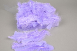 pl40lw Box of turkey feathers lavander 45gr