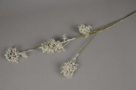 a799lp Branche d'aralia argent H90cm
