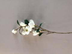 X421MI Branche de magnolia artificielle crème H100cm