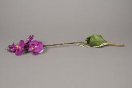x031tr Branche de phalaenopsis artificielle fuchsia H55cm