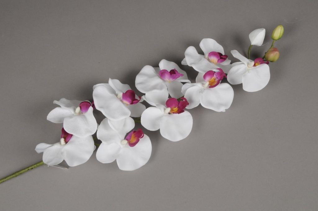 x021ga Branche de phalaenopsis blanc et lilas H94cm