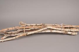 x010mi Branches de bouleau naturel H100cm