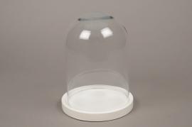 C294DQ Cloche en verre avec plateau bois D17.5cm H23cm