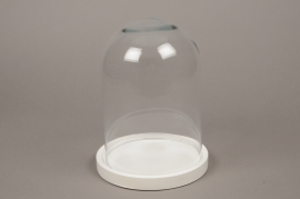 C295DQ Glass bell with wooden plater D21.5cm H30cm