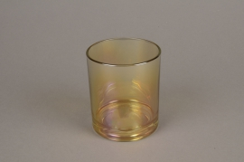 C381DQ Gold glass light holder D9cm H10cm