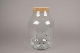 C382DQ Glass terrarium D23cm H34cm