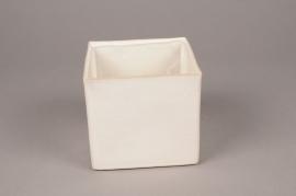 B408WV white ceramic planter 12cm x 12cm H12cm