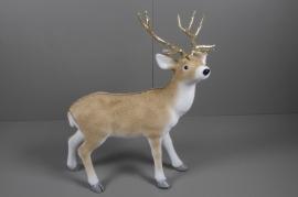 X016V6 Cerf blanc et brun H83cm
