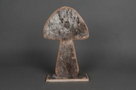Champignon bouleau D22 H37 cm