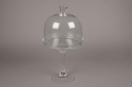 A054MA Glass bell with plater D20cm H38cm
