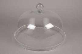 B383W3 Cloche en verre avec plateau D37cm H25.5cm