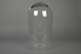 Glass dome D24 H45cm