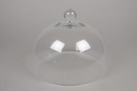 B388W3 Cloche en verre D28cm H24cm