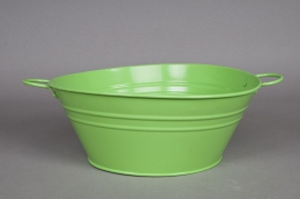 Coupe en zinc vert amande brillant D25 H10cm