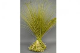 ht01mi dried green tenax grass 2kg H125cm