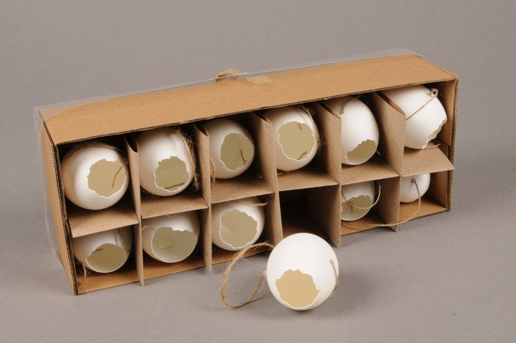 E000J9 Boîte de 12 oeufs D4cm