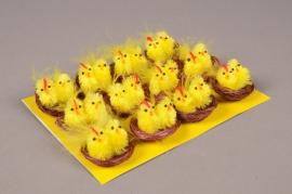 E004J9 Box of 12 yellow nest chicks H3cm
