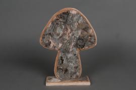 E004O4 Birch mushroom D19cm H26cm