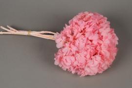 g445ab Hortensia préservé rose pâle H33cm