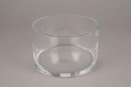 A117PQ Glass bowl D19.5cm H12.5cm