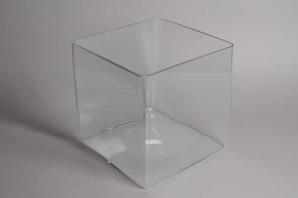 Glass Cube Vase 30x30cm H30cm